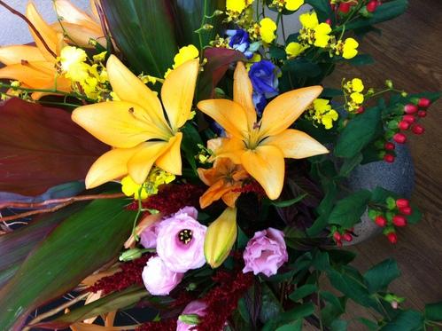 今週のお花とセール情報_a0200423_15421553.jpg