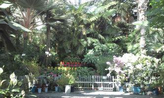 植物公園_e0176128_11501828.jpg