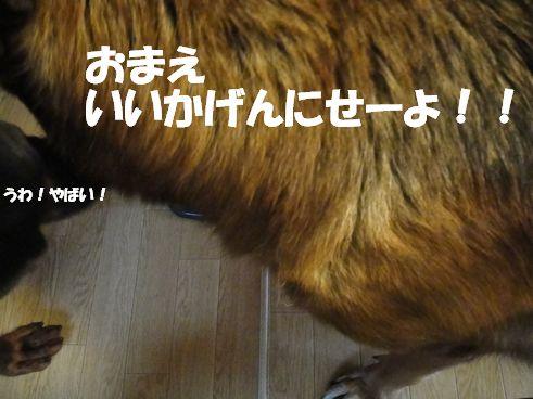 f0088731_12305739.jpg
