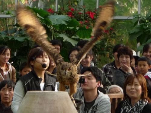 神戸花鳥園_e0173183_002145.jpg