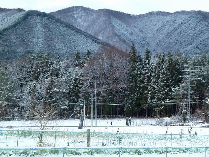 雪化粧_c0127703_19544476.jpg