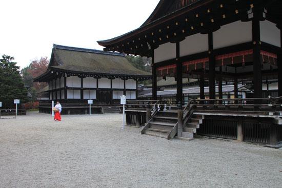 下鴨神社 紅葉の終盤_e0048413_16145391.jpg
