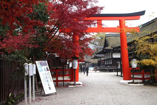 下鴨神社 紅葉の終盤_e0048413_16152377.jpg