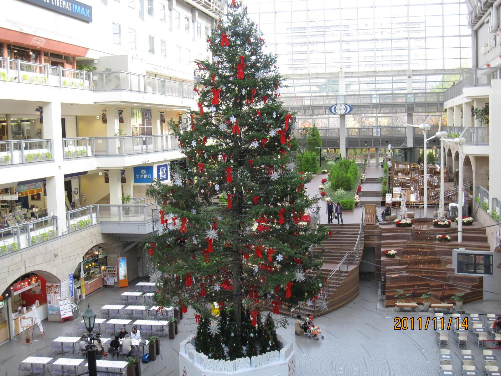 ☆クリスマスツリー☆_f0231042_14544289.jpg