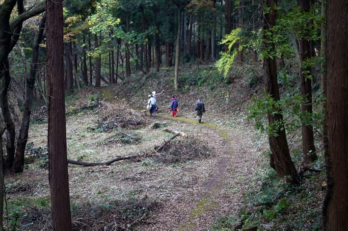 六国見山森林公園の夫婦桜近くを臨時手入れ(12・8)_c0014967_9272111.jpg