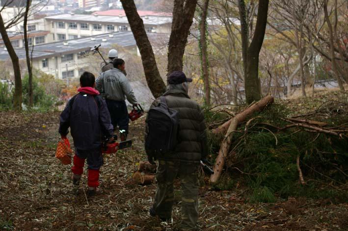 六国見山森林公園の夫婦桜近くを臨時手入れ(12・8)_c0014967_9273873.jpg