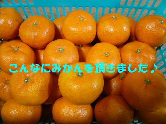 f0183484_23211323.jpg