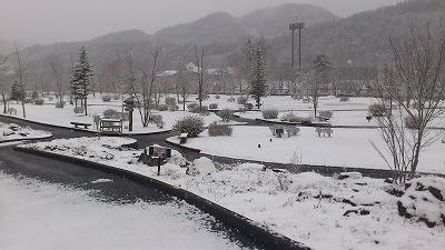 雪降っちゃいましたねぇ・・・_b0219993_16204128.jpg