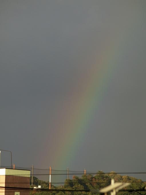 ●同じ虹を別々の場所から撮る_a0037907_2135455.jpg