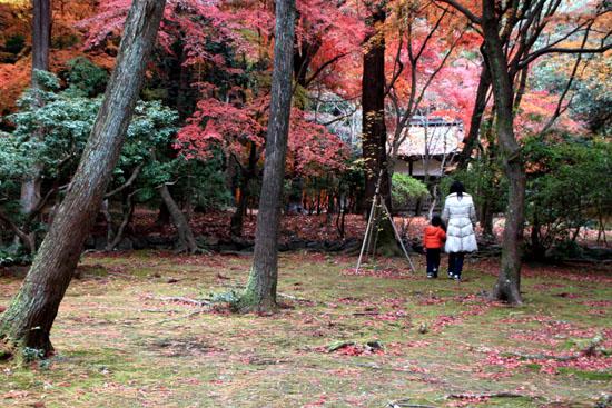 上賀茂神社 紅葉終幕_e0048413_15562144.jpg