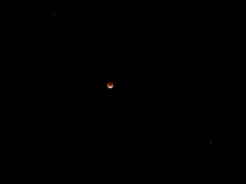 皆既月食_f0223914_23454845.jpg