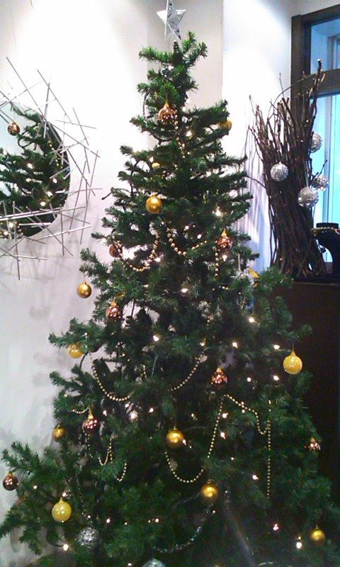 もうすぐ Christmas!!_b0115615_1705852.jpg
