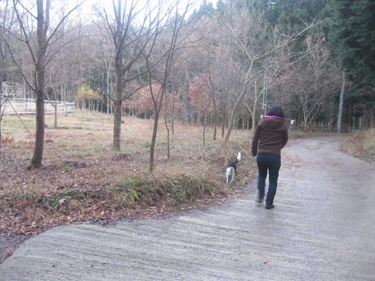 里親への旅~~☆_a0125419_10232140.jpg