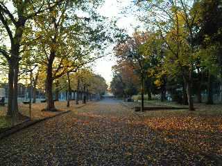 朝陽のあたる公園_a0103940_8455842.jpg