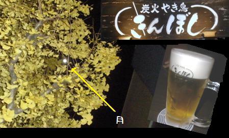 こじんまりと・・・忘年会_a0089450_852553.jpg