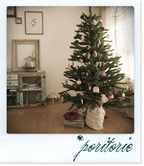 クリスマスの準備*_f0209168_1550735.jpg