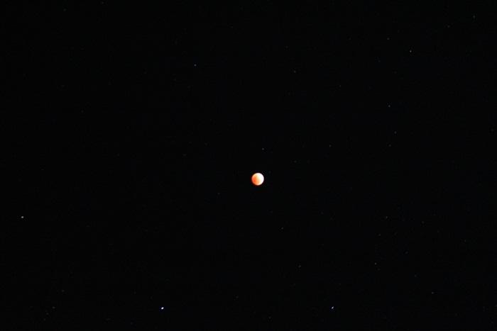 皆既月食 撮影(^_-)-☆_a0213806_0494560.jpg
