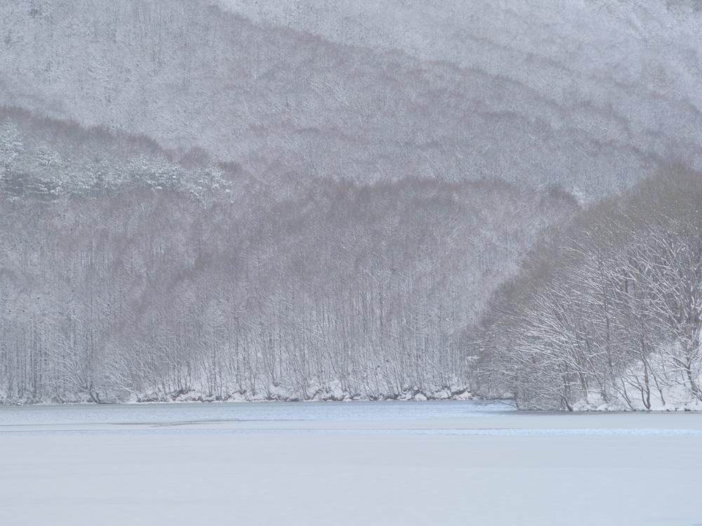 冬の道へ_c0065410_17383141.jpg
