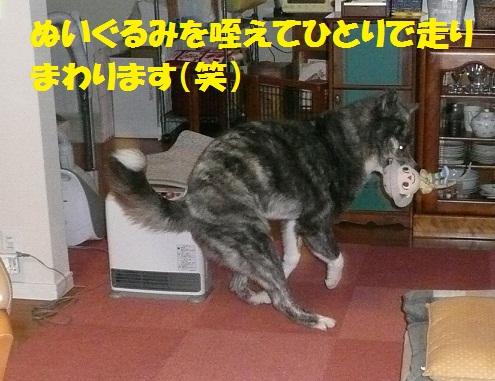 スイッチオン!_f0121712_22163846.jpg