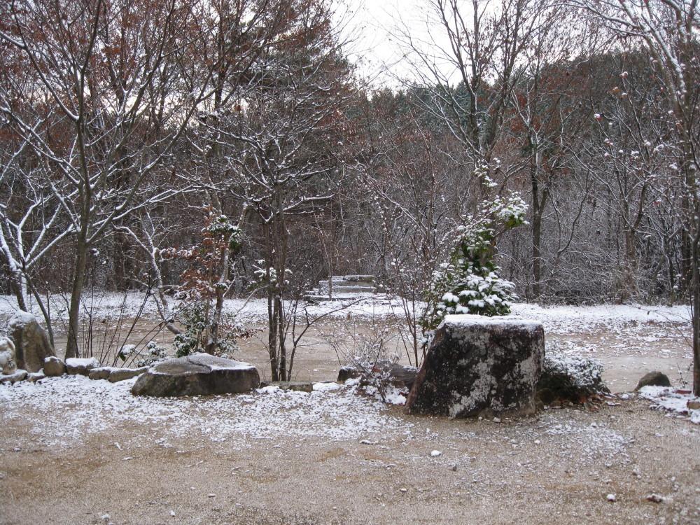 初雪_c0218213_187102.jpg