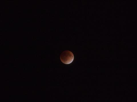 Under A Violet Moon_f0137626_23423521.jpg