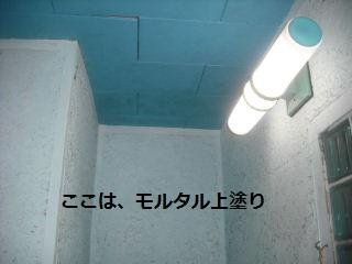 f0031037_19222084.jpg