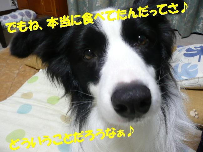 c0147241_1834253.jpg