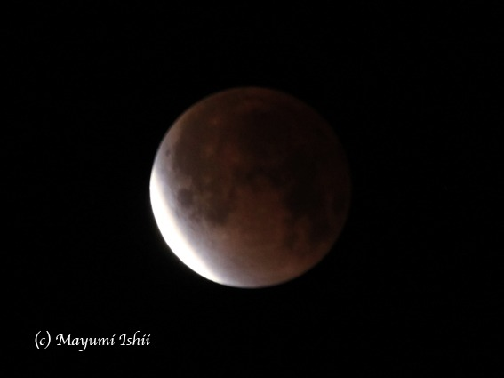 皆既月食 Moon eclipse 2011/12/10_a0086851_3314147.jpg