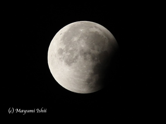 皆既月食 Moon eclipse 2011/12/10_a0086851_332469.jpg