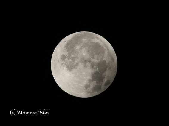 皆既月食 Moon eclipse 2011/12/10_a0086851_333174.jpg