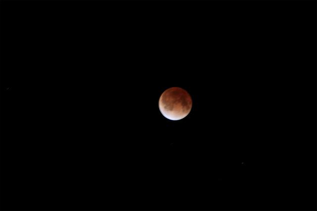 皆既月食。。。赤いお月様_d0152261_1154993.jpg