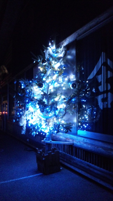 夜のツリー(^^)_e0137684_12354883.jpg