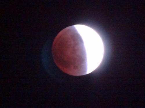 皆既月食_f0201286_9581534.jpg