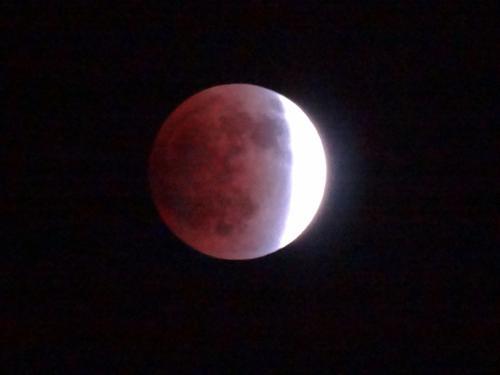 皆既月食_f0201286_9582445.jpg