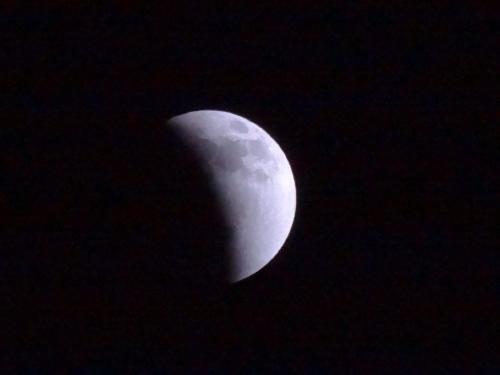 皆既月食_f0201286_958427.jpg