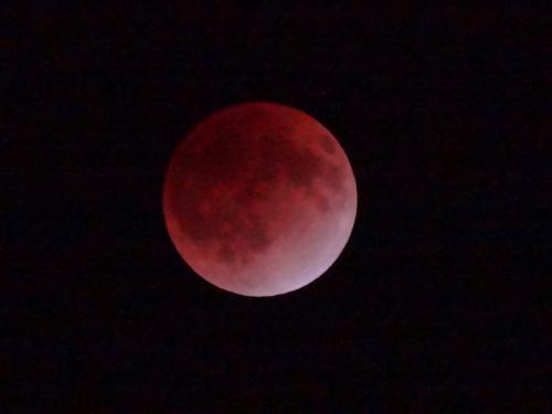 皆既月食_f0201286_9584386.jpg