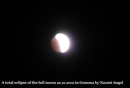 皆既月食 2011/12/10_f0186787_20271584.jpg