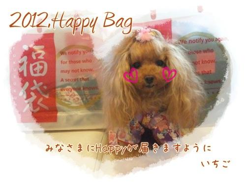2012年HAPPYBAG発売_b0084929_2214974.jpg