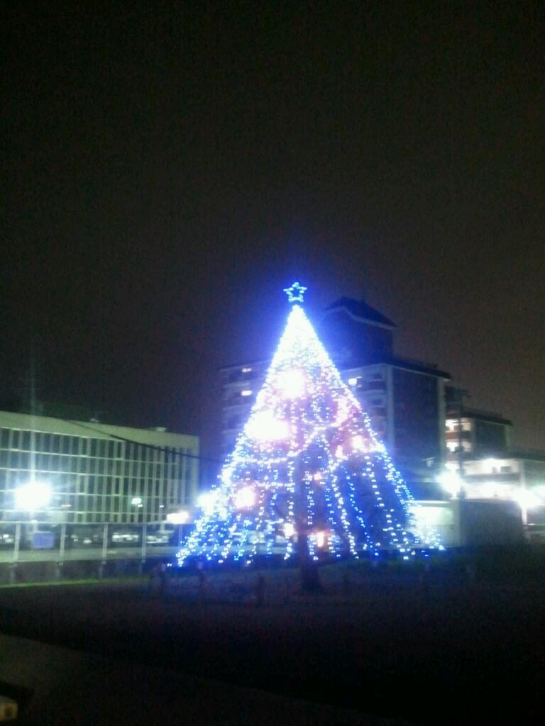 クリスマスツリー!_a0137049_1223647.jpg