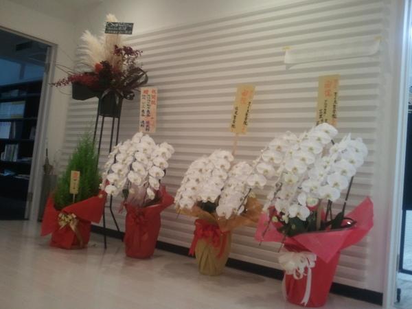 御祝いのお花が届いてます!_a0137049_8175869.jpg