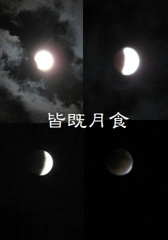 e0201060_175601.jpg