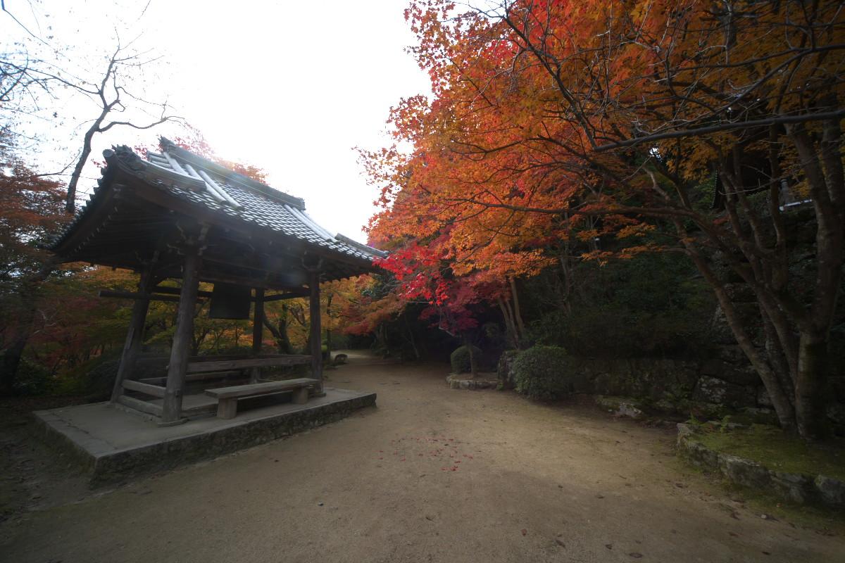 紅葉 2011 西山 勝持寺_f0021869_23909.jpg