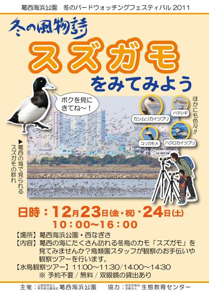 ★西なぎさ版バードフェス開催!!_e0046474_2035464.jpg