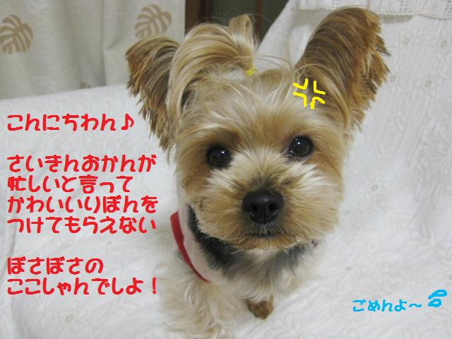 f0143386_1850943.jpg