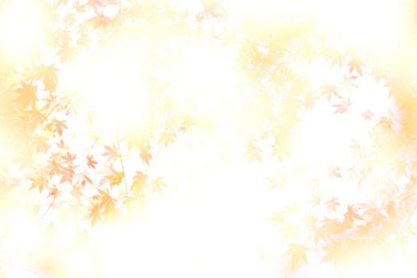 f0185802_21253514.jpg