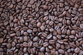 ネルドコーヒーについて_d0163303_13472129.jpg