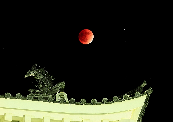 """""""赤銅色の天体ショー"""" 最終章_a0140608_9151393.jpg"""