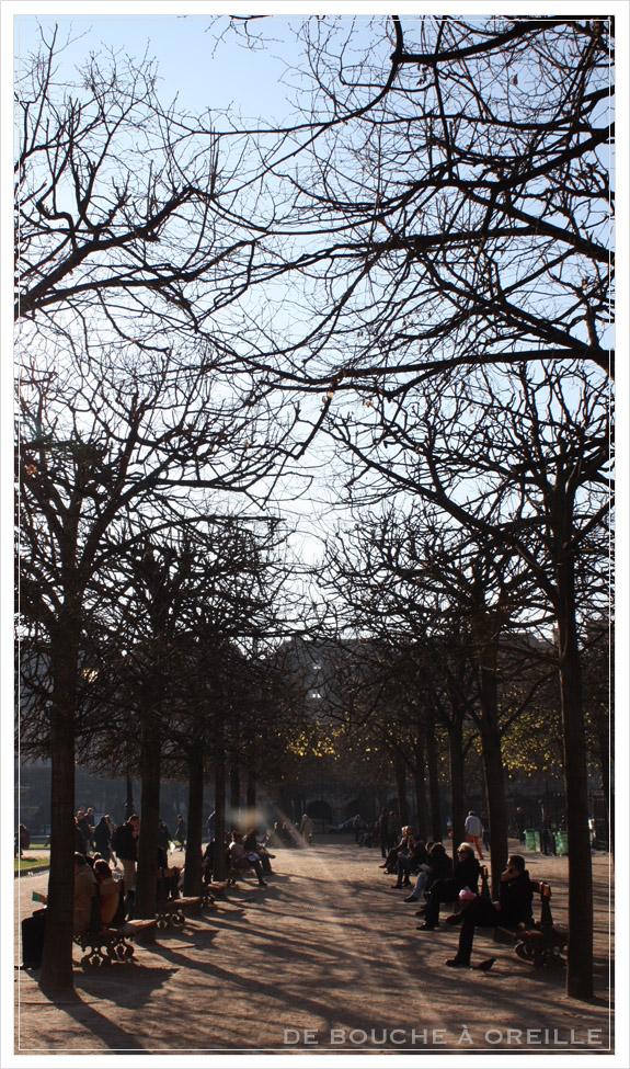 Falafel @ Place des Vosges_d0184921_14483775.jpg