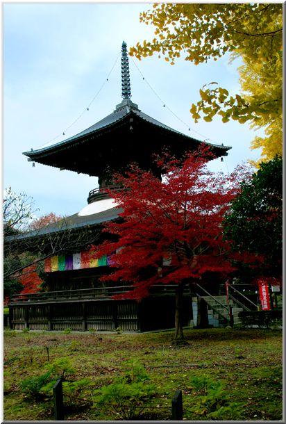 足利・佐野(栃木)の旅Ⅱ_d0123528_1858256.jpg