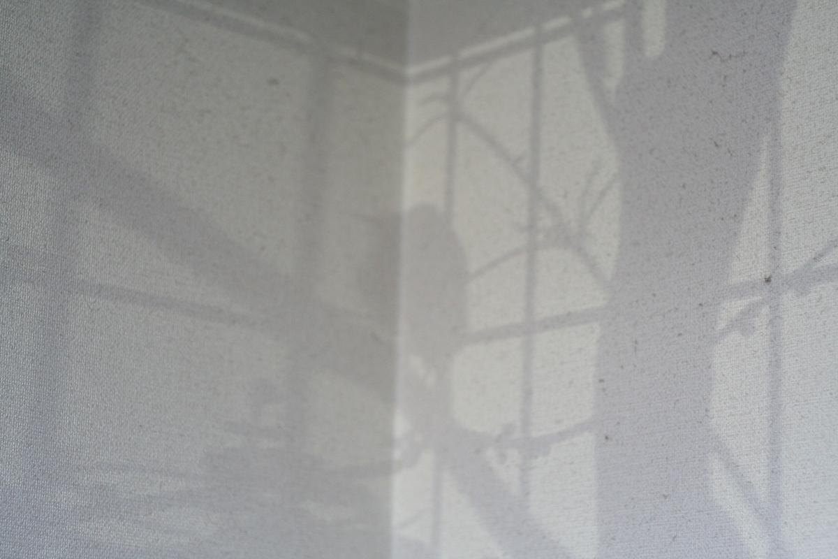 c0073633_1620030.jpg